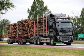 Timber truck lago 1